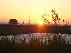 Hafen in der Abendsonne mit Seglerhaus