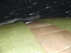 Regen im Orkan