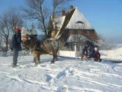 Ponykutsche auf Kirchwarft im Schnee